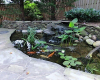 Outdoor Garden Water Features Rainwater Harvesting Systems Ponds Kirkland, WA